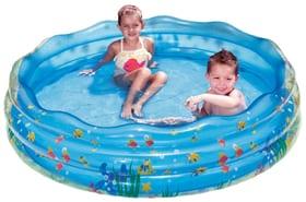 Piscine Aquarium Summer Waves 647123500000 Photo no. 1