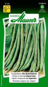 Fagiolino rampicante La vignaiola Sementi di verdura Samen Mauser 650115506000 Contenuto 80 g (ca. 20 pertiche o 8 m²) N. figura 1