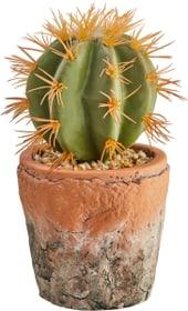 LOTTI Plante artificielle 440759400000 Photo no. 1