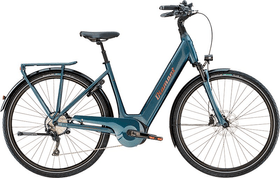 Zagora+ E-Trekkingbike Diamant 46481250454718 Bild Nr. 1