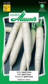 Rettich April Cross Gemüsesamen Samen Mauser 650174900000 Bild Nr. 1