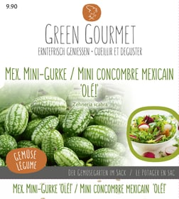 Maxi Garten Mexikanische Mini-Gurke 'Olé Gourmetsamen Do it + Garden 286920200000 Bild Nr. 1