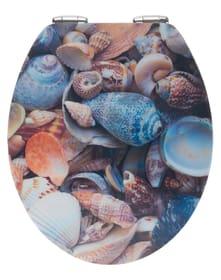 3D Muschel WC-Sitz WENKO 674042900000 Bild Nr. 1