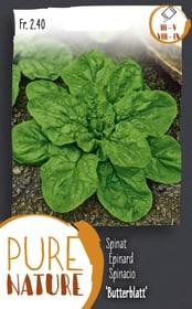 Spinat 'Butterblatt' Frühjahr Herbst 20g Gemüsesamen Do it + Garden 287113000000 Bild Nr. 1