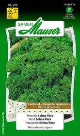 Saatband Petersilie Selma-Para Gemüsesamen Samen Mauser 650114402000 Inhalt 3 x 2.5 m Saatband für 1 - 1.5 m² Bild Nr. 1