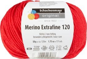 Wolle Merino Extrafine 120 Schachenmayr 665510300060 Farbe Rot Bild Nr. 1