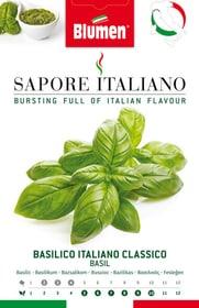 Basilico Italiano Classico Sementi di erbe Blumen 650164000000 N. figura 1