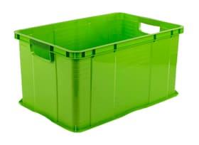 Systembox A3 Agilo Aufbewahrungsbox Rotho 604149500000 Bild Nr. 1