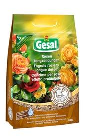 Rosen Langzeitdünger mit Schafwolle, 3 kg Feststoffdünger Compo Gesal 658232700000 Bild Nr. 1