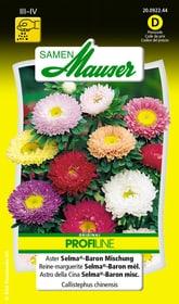 Aster Selma®-Baron Mischung Blumensamen Samen Mauser 650102002000 Inhalt 0.25 g (ca. 100 Pflanzen oder 5 - 6 m²) Bild Nr. 1