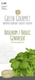 Basilic 'Genoveser' 5 graine plaque Semences de gourmet Do it + Garden 287102300000 Photo no. 1
