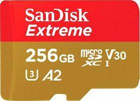 SanDisk  Extreme 160MB/s microSDHC 256GB Micro SD SanDisk 798249100000 Bild Nr. 1