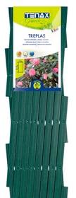 Treillis extensible décoratif TREPLAS 0.5 x 2 m 647344400000 Couleur Vert Taille L: 2.0 m x L: 0.5 m Photo no. 1