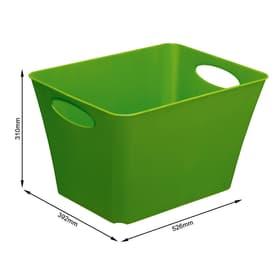 LIVING Box 44l, Plastique (PP) sans BPA, vert Panier Rotho 604057900000 Photo no. 1