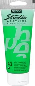 Pébéo Studio Acrylic Pebeo 663509831043 Colore Verde Cadmio N. figura 1