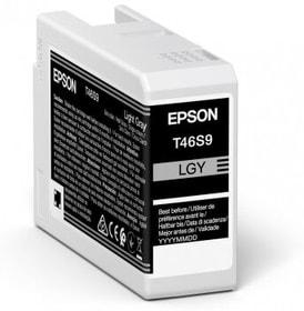 Tintenpatrone T46S900 light gray Tintenpatrone Epson 785300153433 Bild Nr. 1