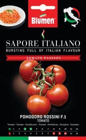 Tomate Rossini F1 Sementi di verdura Blumen 650162700000 N. figura 1