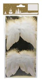 Engelsflügel aus Federn Geroma 658865100000 Bild Nr. 1