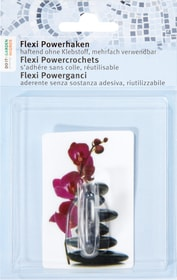 Flexi Powergancio Orchidea Do it + Garden 675113600000 Soggetto Orchiea Colore Bianco-viola N. figura 1