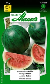 Wassermelone Rubin Gemüsesamen Samen Mauser 650115801000 Inhalt 1 g (ca. 6 - 8 Pflanzen oder 5 m² ) Bild Nr. 1