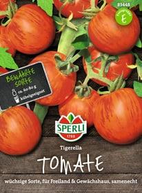 Tomaten Tigerella Semences de legumes Sperli 650180500000 Photo no. 1