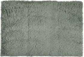 TODOR Tappetino da bagno 453020551260 Colore Verde Dimensioni L: 60.0 cm x A: 90.0 cm N. figura 1