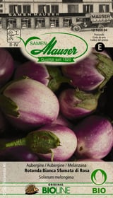Aubergine Rotonda Bianca Sfumata di Rosa Sementi di verdura Samen Mauser 650244300000 N. figura 1