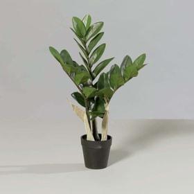 Zamioculcas Kunstpflanze 657361000000 Bild Nr. 1