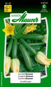 Zucchino Diamant Sementi di verdura Samen Mauser 650116601000 Contenuto 2.5 g (ca. 10 piante o 7-10 m²) N. figura 1