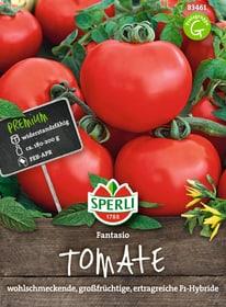 Tomate Fantasio Gemüsesamen Sperli 650153600000 Bild Nr. 1