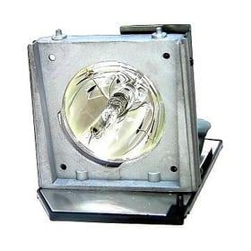 Lampe de projecteur pour PD116P,PD523,2300MP