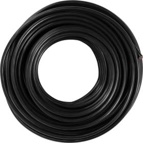 Câble éclairage 10m