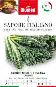 Chou Nero di Toscana Sementi di verdura Blumen 650164300000 N. figura 1