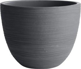 Vaso per piante Iris Grosfillex 659576100000 Colore Antracite Taglio ø: 50.0 cm x A: 38.0 cm N. figura 1