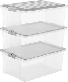 Compact 38 l mit Deckel, A3, 3er-Set Aufbewahrungsbox Rotho 603715800000 Bild Nr. 1