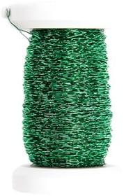 Effektdraht 0.25mm x 50m I AM CREATIVE 665277600000 Farbe Grün Bild Nr. 1