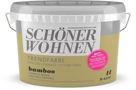 Couleur tendance mate  Bamboo 1 l Peinture murale Schöner Wohnen 660941000000 Contenu 1.0 l Photo no. 1