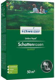 Schattenrasen - Umbra Royal, 50 m² Rasensamen Eric Schweizer 659290300000 Bild Nr. 1