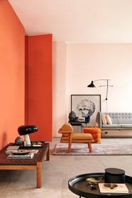 sch ner wohnen peinture tendance mate 50ml poudre acheter chez do it garden. Black Bedroom Furniture Sets. Home Design Ideas