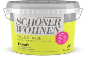 Trendfarbe Matt Fresh 1 l Schöner Wohnen 660940900000 Farbe Fresh Inhalt 1.0 l Bild Nr. 1