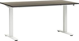 FLEXCUBE ECCO Table réglable en hauteur 401905600000 Dimensions L: 140.0 cm x P: 80.0 cm x H: 73.0 cm Couleur Noir Photo no. 1
