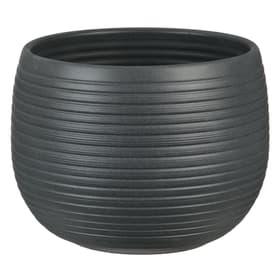 Keramik Übertopf Übertopf Scheurich 658611700024 Farbe Anthrazit Grösse ø: 24.0 cm x H: 18.0 cm Bild Nr. 1