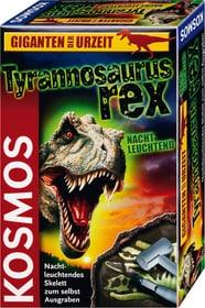 Giganten der Urzeit Tyrannosaurus rex Nachtleuchtend (D)