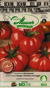 Pomodoro da viaggio Sementi di verdura Samen Mauser 650244800000 N. figura 1