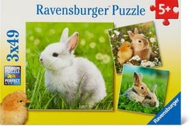 Niedliche Häschen Puzzle Puzzle Ravensburger 748977100000 Bild Nr. 1
