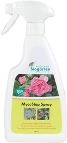 MycoStop Spray, 500 ml Maladies fongiques Andermatt Biogarten 658514800000 Photo no. 1
