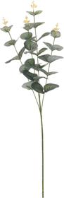 Eucalyptus Pianta artificiale Do it + Garden 657613400000 N. figura 1