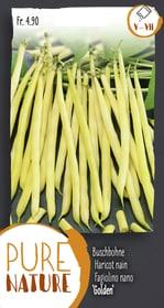 Buschbohne 'Golden' 50g Gemüsesamen Do it + Garden 287107600000 Bild Nr. 1