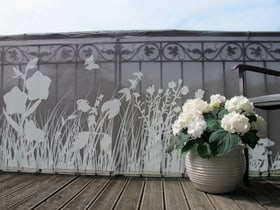 Balkonbespannung Motiv Gräser 300x90cm Videx 631227700000 Bild Nr. 1