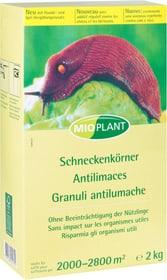 Schneckenkörner, 2 kg Schneckenbekämpfung Mioplant 658428200000 Bild Nr. 1